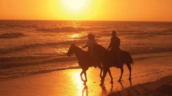 horseback-riding-beach-800x449