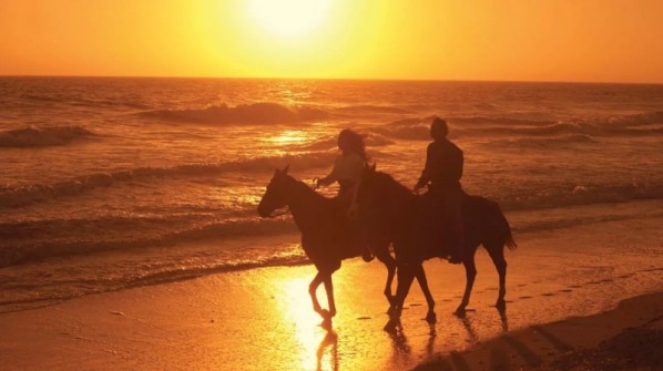 horseback-riding-beach-800x449