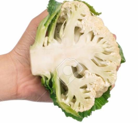 84279109-hand-holding-slice-cauliflower-isolated-on-white-background.jpg