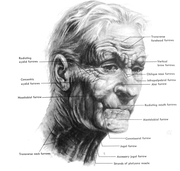 wrinklesofoldage